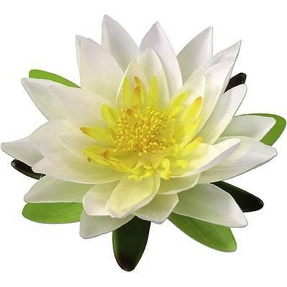 Möbelix umelá kvetina Lotos