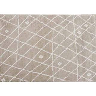 Koberec Tyron béžová/biela 100x150