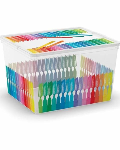Viacfarebný úložný box KIS